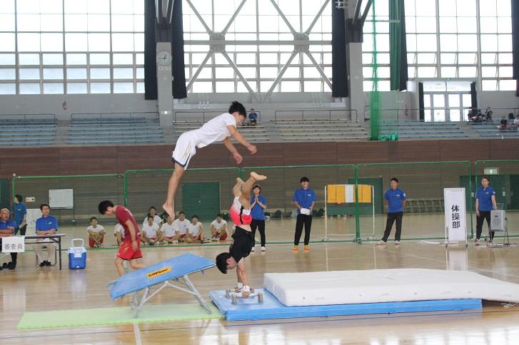体操部演技の様子の写真